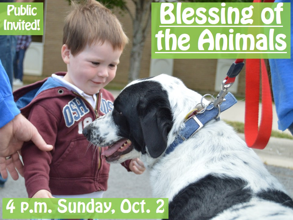 blessing-of-animals-2016-tp